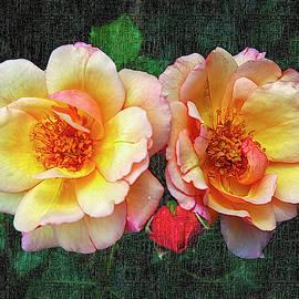 A Peachy Pair by Paul Coco