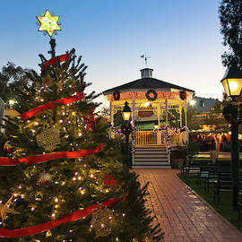 A Pinnacle Peak Christmas Scene, Tucson, Arizona by Derrick Neill
