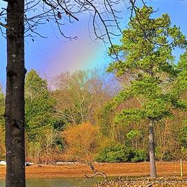 A Pot Of Gold On Lake Murray South Carolina Vertical by Lisa Wooten