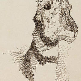 A Pronghorn Antelope By Remington by Frederic Remington