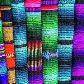 A Rainbow of Color by Lynne Pedlar