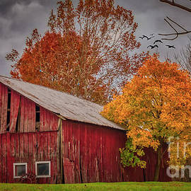 A Red Ohio Barn In Autumn by Janice Pariza
