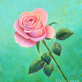 A Rose for Zilpha by Sarah Irland