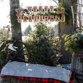 Karen Cook - A Ross Farm Christmas