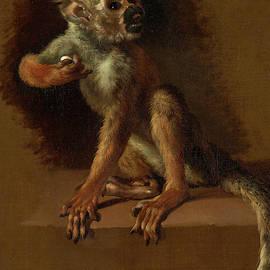 Jan Weenix - A Seated Monkey