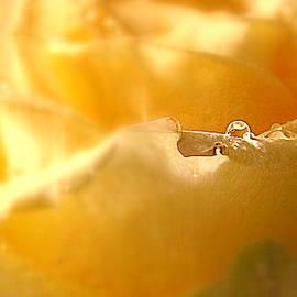 A single Drop by Arlane Crump