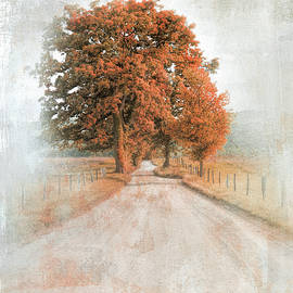 A Solitary Road In Autumn by Jai Johnson