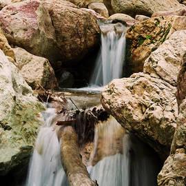 A South Fork Cascade, Cave Creek Canyon, Chiricahua Mountains, A by Derrick Neill