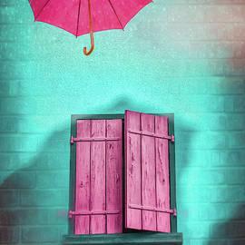 A Splash of Color on a Rainy Day  by Carol Japp