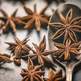 A Spoonful of Stars by TL Wilson Photography by Teresa Wilson