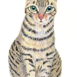 A Tabby Cat Portrait by Jingfen Hwu