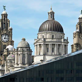 A View of the Royal Liver and Port of Liverpool Buildings by Derrick Neill