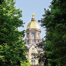 A View Through the Trees at the Golden Dome by Scott Pellegrin