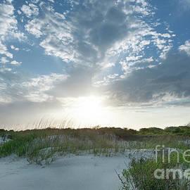 A Walk Along The Beach - Sullivan's Island South Carolina by Dale Powell