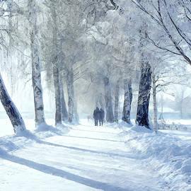 Terry Davis - A Winter