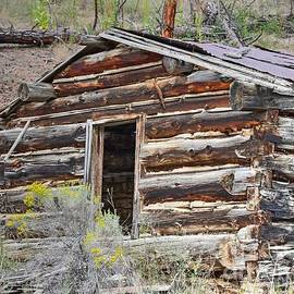Abandon Log Cabin by Steve Brown