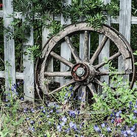 Abandoned Cart Wheel by Helen Northcott
