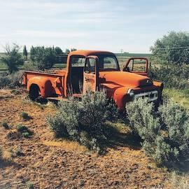 Abandoned International Pickup by Jerry Abbott