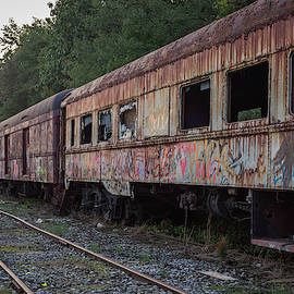 Terry DeLuco - Abandoned Train Cars