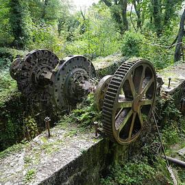 Abandoned Waterwheel Luxulyan Valley Cornwall by Richard Brookes