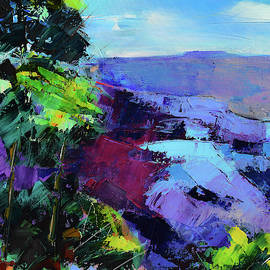 Blue Shades Over The Canyon by Elise Palmigiani
