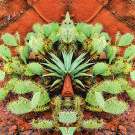 Scott McAllister - Abstract cactus 07-013 s5