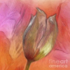 Abstract Clematis Bud by Lynn Bolt