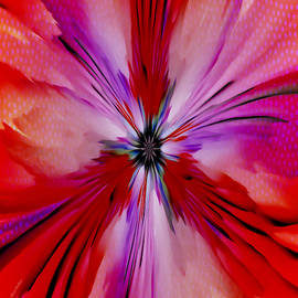 Abstract Flower 22 Print by Scott Wallace Digital Designs