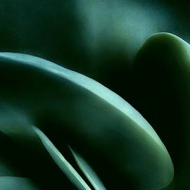 Abstract In Green by Mark Fuller