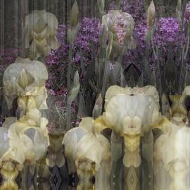 Abstract Iris Garden by Robert G Kernodle