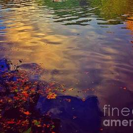 Abstract - Pond with Ripples by Miriam Danar