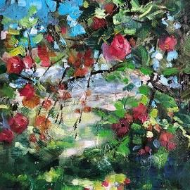 Abundance by Lori Pittenger