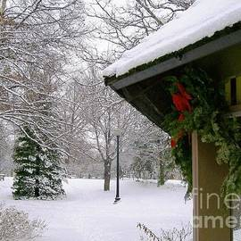 Adams Park Gazebo Winter