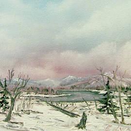 Adirondack by Edward Theilmann