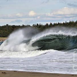Sandra Huston - Admiring A Killer Wave At Popham Beach, Maine