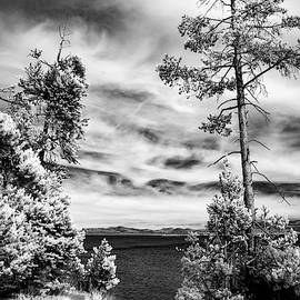 Afternoon At Yellowstone Lake by Cathy Franklin
