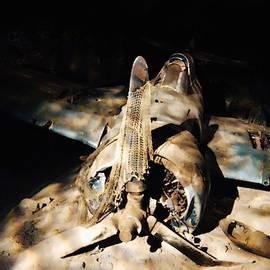 Aircraft Down by Carmen Clark