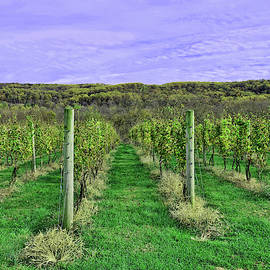 Alba Winery - Milford N J by Allen Beatty