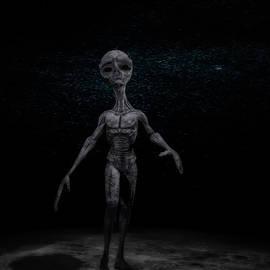 Alien on the Moon by Ramon Martinez