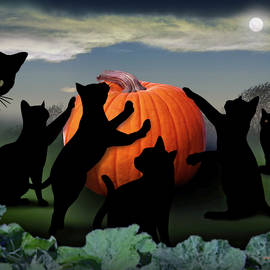 All Hallows Eve Black Cats by Brian Wallace