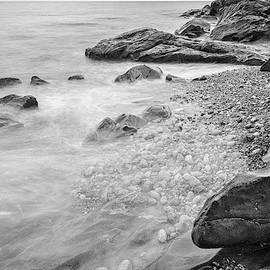 Allens Pond Xxx Bw by David Gordon