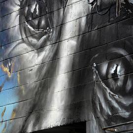 UrbanEyez- Nelson BC by Joy McAdams