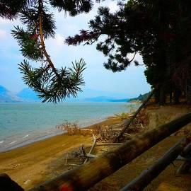 Along the Shore Jackson Lake by Mountain Femme