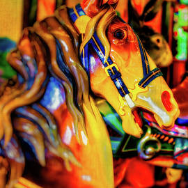 Amber Carrousel Horse by Garry Gay