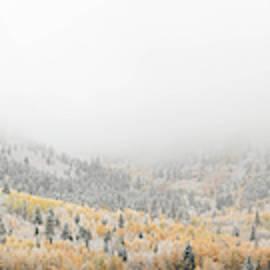 American Fork Canyon by Dustin LeFevre