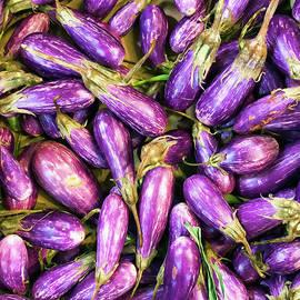 An Abundance of Eggplant by Lenore Locken