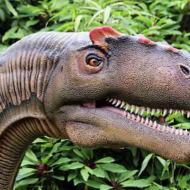 An Allosaurus Dinosaur, Chester Zoo, Cheshire, England, GB, UK by Derrick Neill
