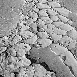 Ancient Lakebed by Jurgen Lorenzen