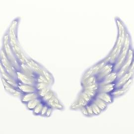 Angel wings by Ronni Dewey