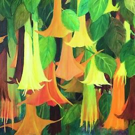 Angels trumpet flower by Nancy Shen